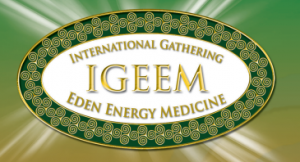 International Energy Medicine Conference 2014